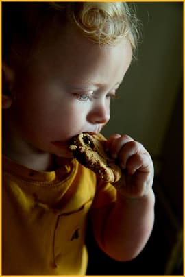 Baby Eating Chocolate Chip Cookie