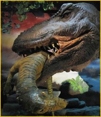 Dinosaur Exhibition Beijing