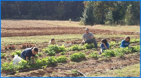 School kids in garden