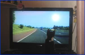 Kitten watching a police chase