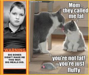 cataddictsannony-mouse