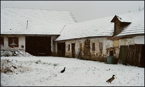 Recollection of the Last Winter-Old Czech Farm