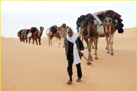 tunisia-bedouin