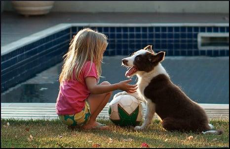 girl-dog-ball