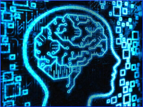 brain-illustration-in-blue