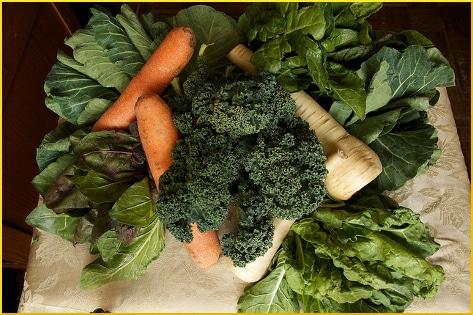 fresh-produce-bag