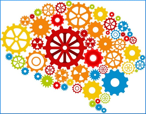 brain-and-gears-illustration