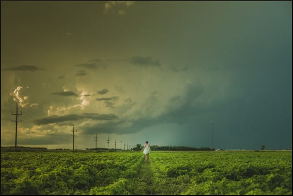 gray-skies-above-the-field